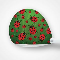 0341 multiple lady bug 2d.jpg